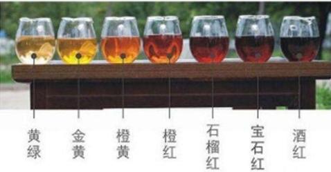品鉴普洱茶余秋雨图片