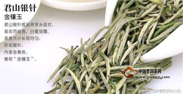 君山银针是绿茶吗