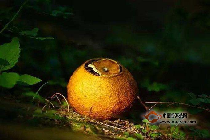 大红柑普洱茶怎么泡