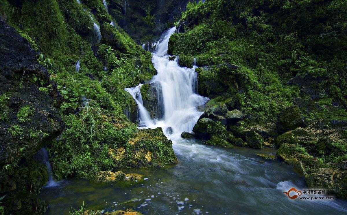 它属地表水,含杂质较多,混浊度较高,一般说来,沏茶难以取得较好的效果,但在远离人烟,又是植被生长繁茂之地,污染物较少,这样的江、河、湖水,仍不失为沏茶好水。如浙江桐庐的富春江水、淳安的千岛湖水、绍兴的鉴湖水就是例证。唐代陆羽在《茶经》中说:其江水,取去人远者。说的就是这个意思。唐代白居易在诗中说:蜀水寄到但惊新,渭水煎来始觉珍,认为渭水煎茶很好。唐代李群玉曰:吴瓯湘水绿花,说湘水煎茶也不差。明代许次纾在《茶疏》中更进一步说:黄河之水,来自天上。浊者土色,澄之即净,香味自发。言即使浊混的黄