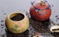 详解普洱茶醒茶原理及其技巧