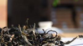 【茶人茶话】了解普洱茶,需要把自己压在那里多长时间?
