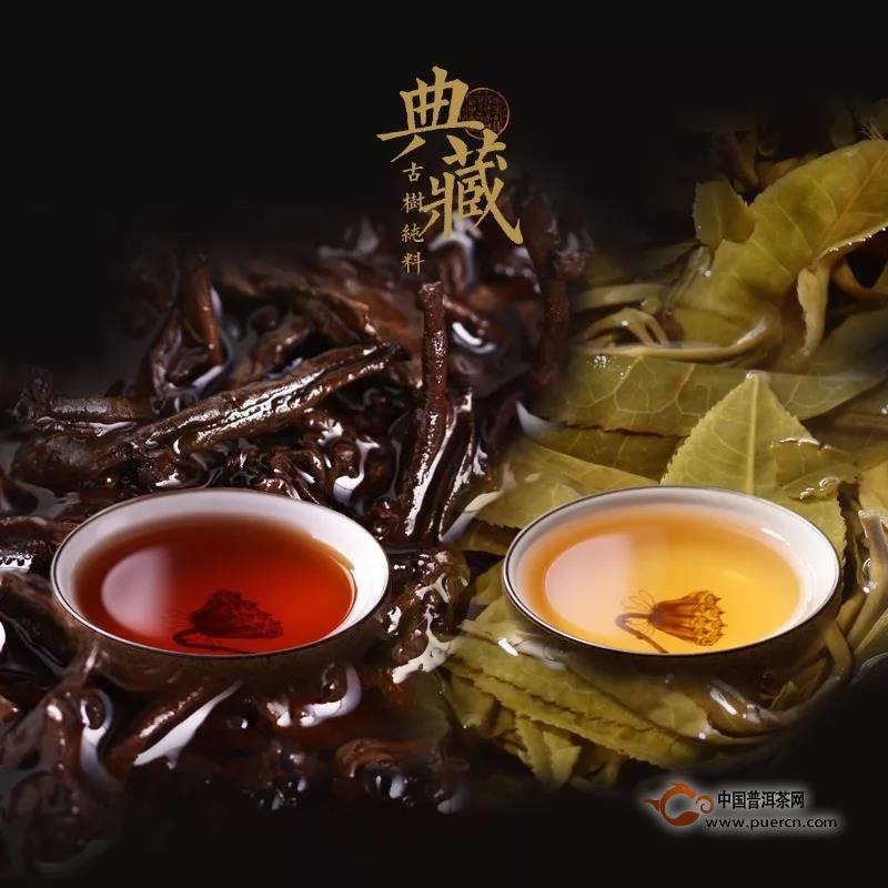 什么是普洱茶?如何区别?