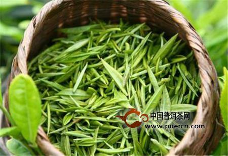 苍山雪绿属于什么茶