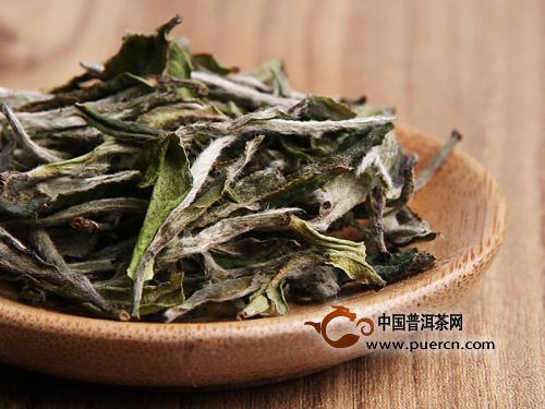 福鼎白茶的历史
