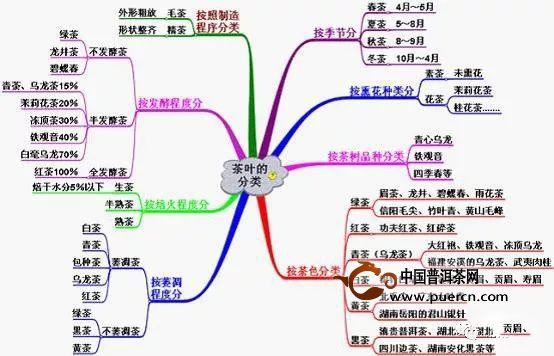 茶叶的基本分类