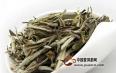 品鉴白茶的6个核心标准