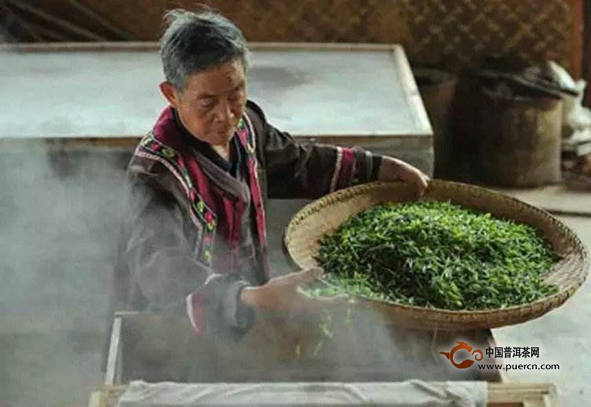 仙人掌茶的制茶工艺 - 茶叶制作过程_为您介绍茶叶_的