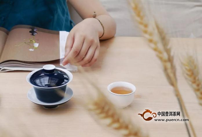 白茶冲泡(三):不同用具,也有不同泡法