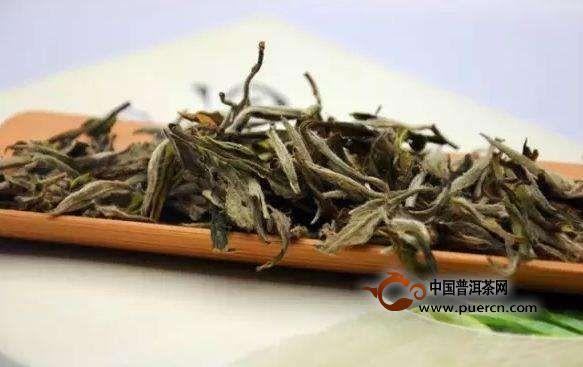 """白茶,为什么被称为""""茶中瑰宝""""?"""