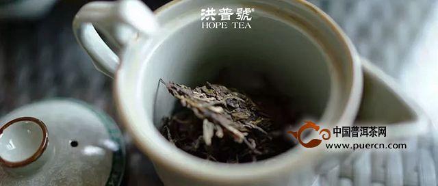 我要控诉,喝茶这件事为什么这么难!