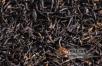"""中国茶产业风险加剧,茶产品去库存任务艰巨,茶消费正处于""""瓶颈期""""!"""