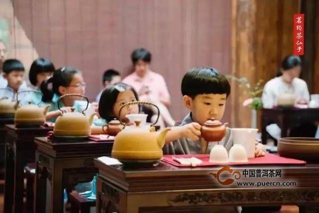 茶文化基本知识