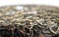 喝茶新手该如何鉴别普洱茶?