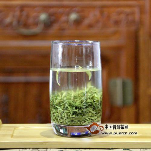 屯溪绿茶历史与现状