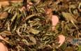 白茶存放手册(建议收藏!)