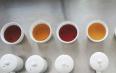 茶叶审评标准及专业术语