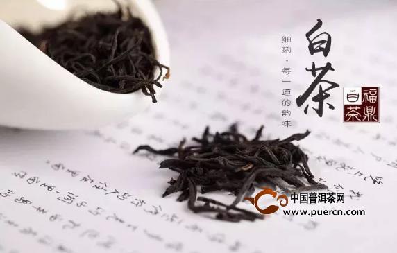 白茶是不是药不重要,重要的是它能让你少吃很多药!