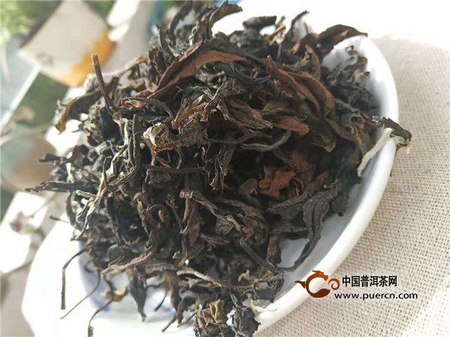 秋天采摘的白茶你了解嘛?