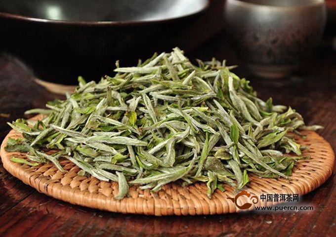 绿雪芽白茶怎么泡