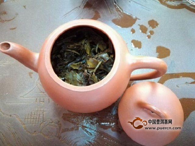 白茶的耐泡程度受哪些因素影响?