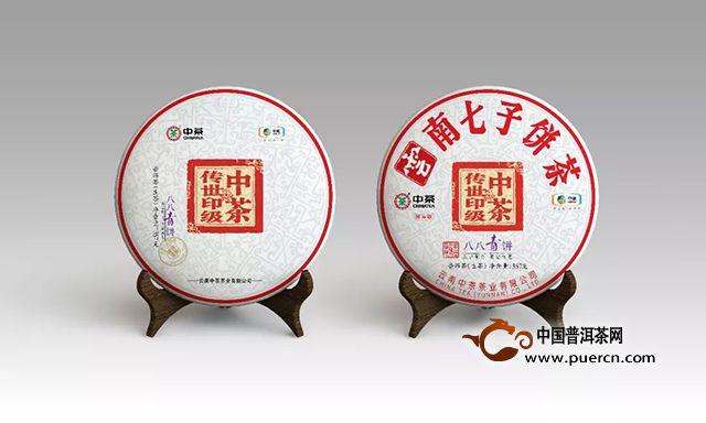 中山茶博会|沏一壶中茶,在中山的深冬等你