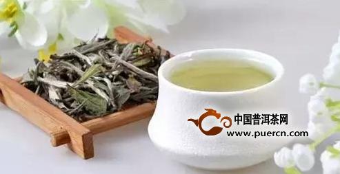 白茶的药用价值