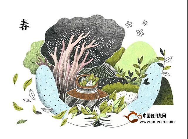 佤山茶学堂丨四季之茶