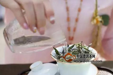 白茶,用盖碗应该怎样泡才更好?