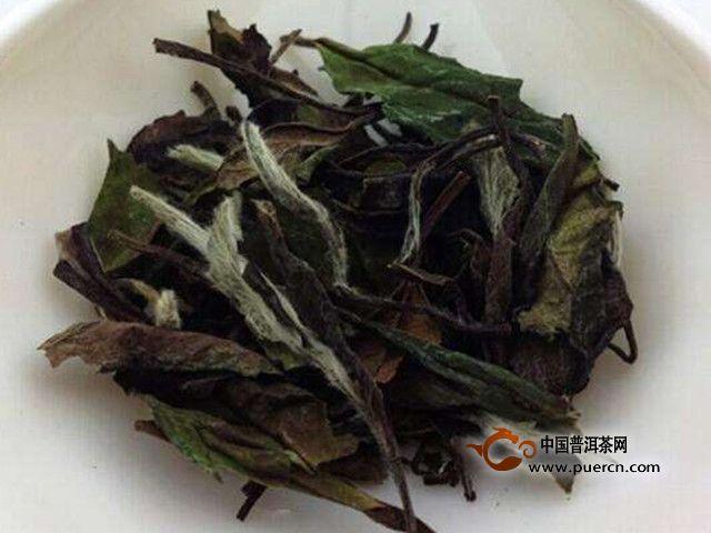 白牡丹茶叶是什么茶