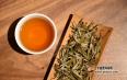 教你如何分辨老白茶?