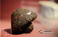 紧压之谜——沱茶与砖茶的发酵载体