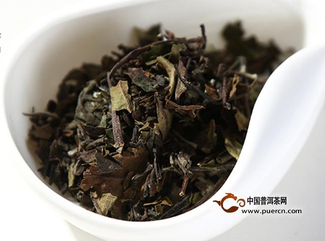 科学正确的白茶饮用方法
