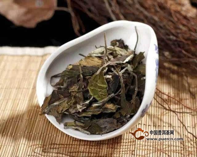 白茶的散茶、茶饼、茶砖,选哪一种好呢?
