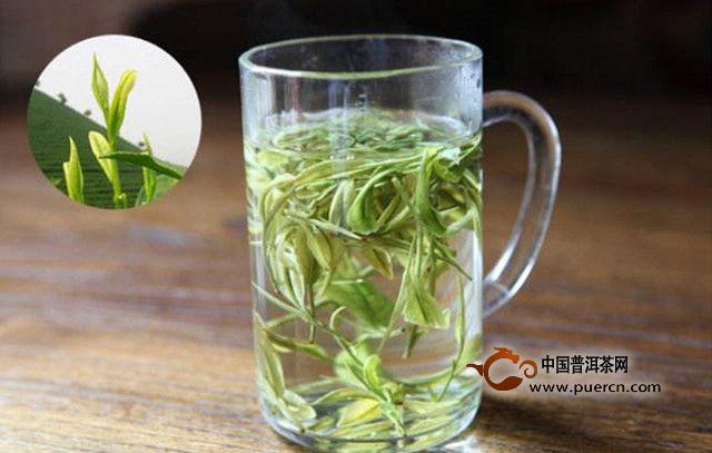 安吉白茶适合什么时候喝?一天喝多少量合适