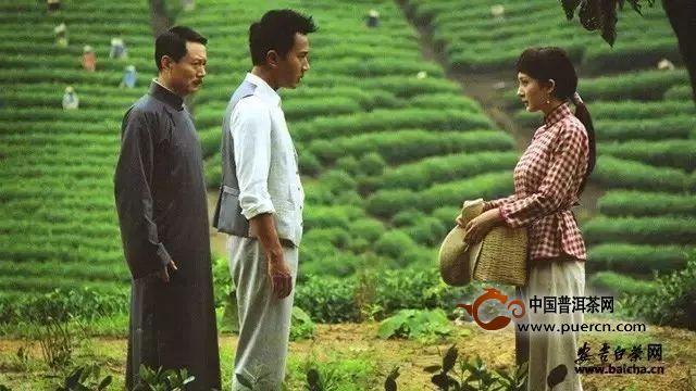 安吉白茶获批2019年首批全国农产品地理标志登记产品