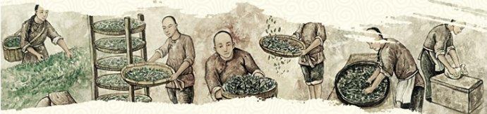 祁门红香螺和祁门红茶有什么不同