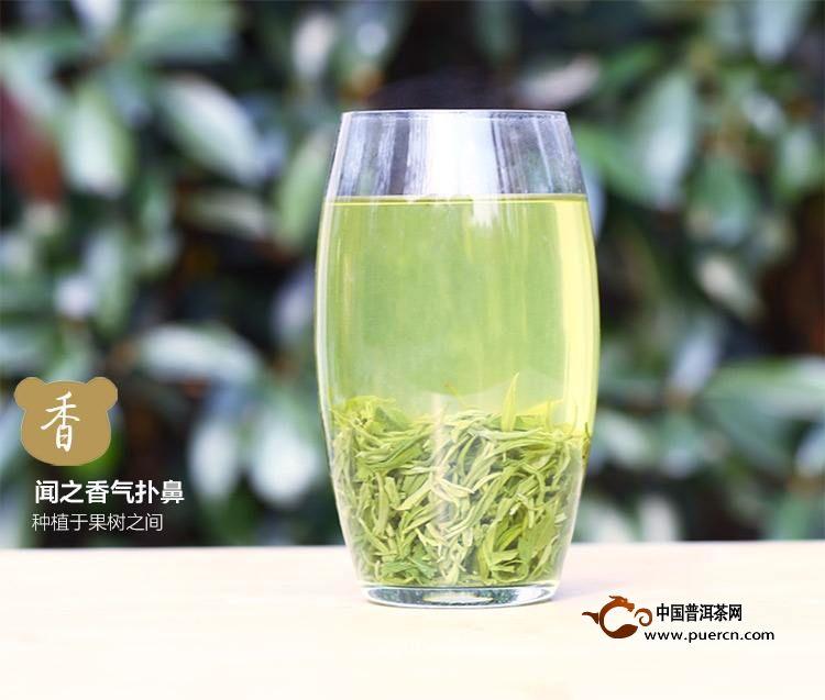 如何分辨茶叶中是否有添加剂【技巧知识分享】