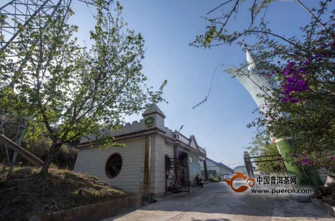 《亚博》墨江露水茶厂,有山有茶有杜鹃