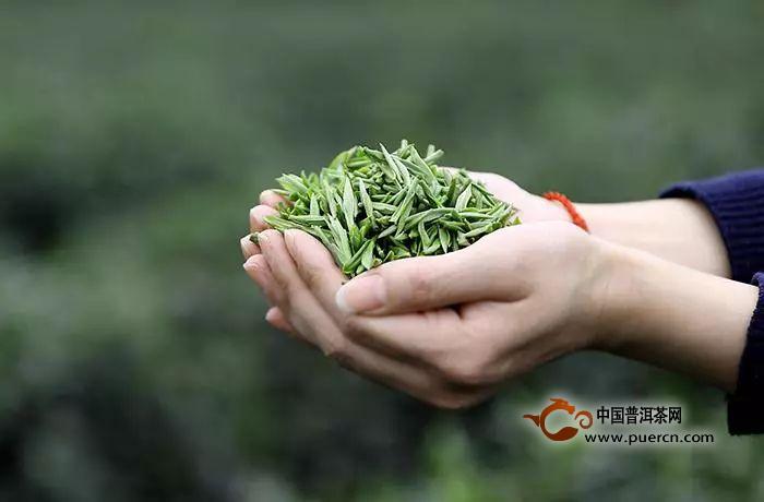 霍山黄大茶的制作工艺流程