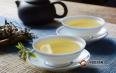 学普洱茶,给普洱新手的一些建议!