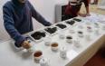 干货︱六堡茶(黑茶)评测体系是怎样的?