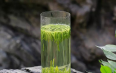 日照绿茶什么时候采摘的好喝