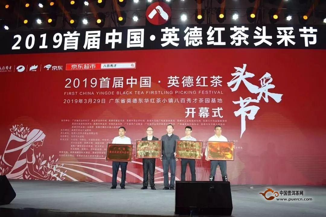 2019首届中国·英德红茶头采节盛大举办!