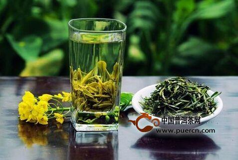 晒青绿茶的主要品种有哪些