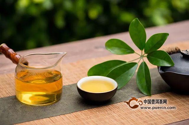 """中茶:【新品上市】春意盎然""""白牡丹"""""""