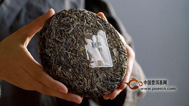 吉普号:独家!80%的做茶人都在囤它