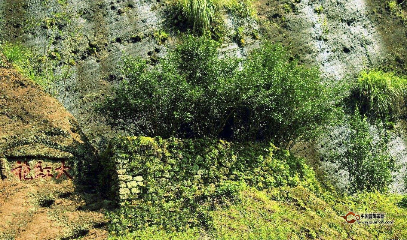 大红袍名称的来历,大红茶茶叶的起源