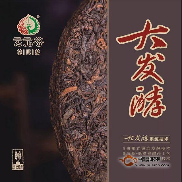 云元谷每日熟茶丨科普:烧堆是怎么一回事?