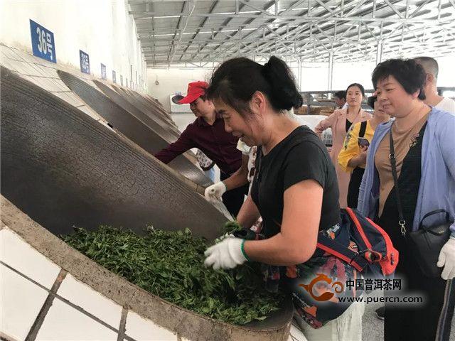 東卓茶業之兩大原料基地解讀:麻黑&南列